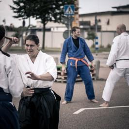 Samträning Sport Ju-Jutsu och Aikido!?