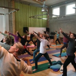 Prova Mindfulnessyoga – fysisk & mental träning på Musubi-Dojo