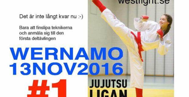 Dags för ju-jutsutävling i Värnamo