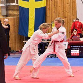 Stora framgångar på judotävling i helgen!
