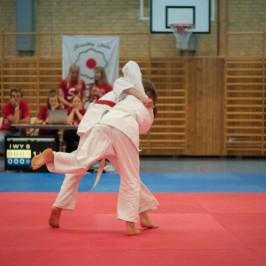 Resultat från Skåneserien 2 i Judo, våra ungdomar