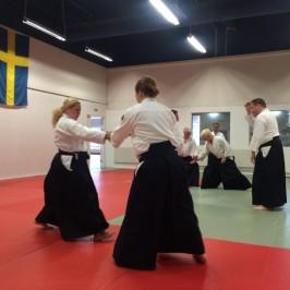 Genomförd Aikido-workshop i Malmö